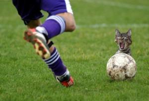 10 от най-забавните моменти във висшата лига