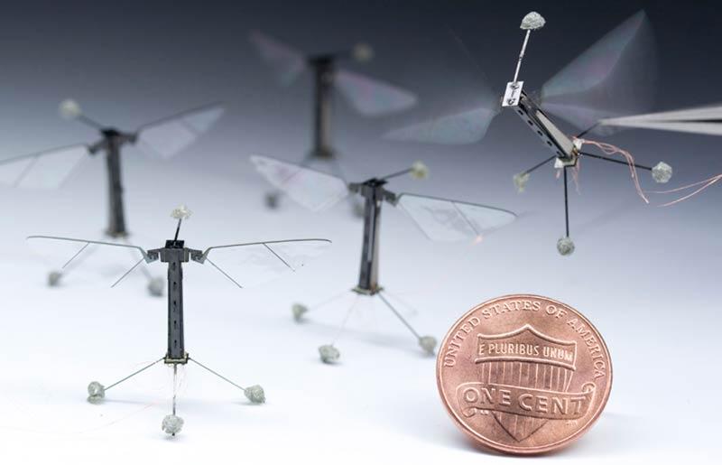 Най-малкият в света робот – Муха