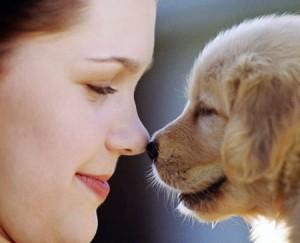 Защо обичам животните повече от хората?