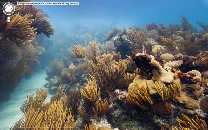 Google maps с подводни street views