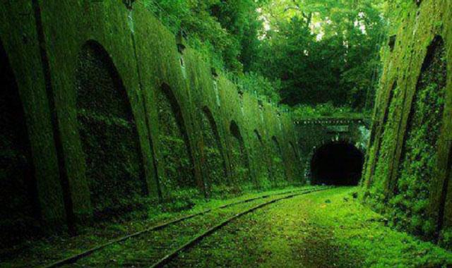 Chemin de fer de Petite Ceinture е едно от седемте дяволско зловещи, но красиви изоставени места
