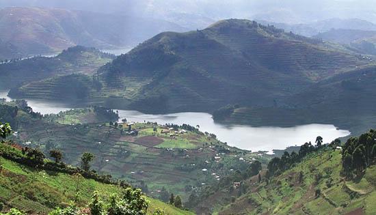 Национален парк Вирунга, Демократична република Конго
