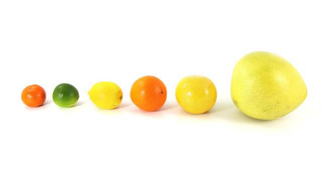 Грейпфрутът – витаминната бомба