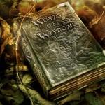 3500 години мъдрост в 3 минутно видео