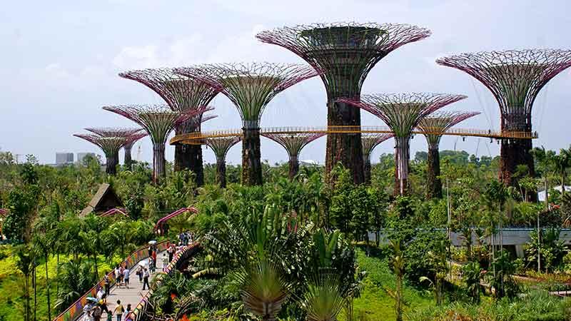 Сингапур е в топ 5 на най-зелените държави в света