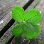 Съотношението късмет – закономерност