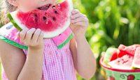 Време за… плодове