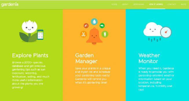 Gardenia-Planting Organizer