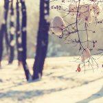10 причини да мразим зимата
